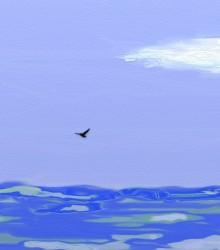 ED 0004 - Perdido no Alto Mar 01
