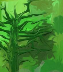 ED 0223 - Seca Verde do Nordeste